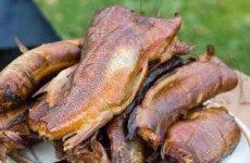 Деликатесы: рыба копченая в домашних условиях в коптильне горячего копчения